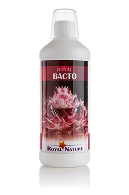 ROYAL NATURE BACTO 1000 ML